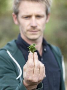 Cueilleur d'herbes sauvages dans les monts du Jura